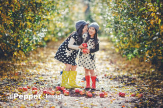 affordable family photography sydney