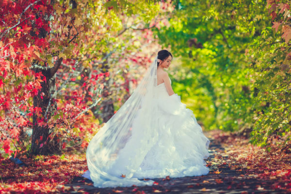 the lovely bride in her lovely gown by Pepper Image
